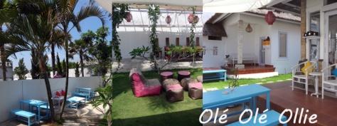 Olé Olé Ollie garden café