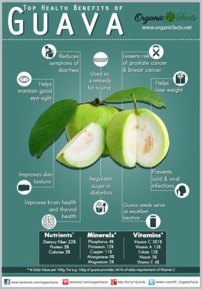 guava info