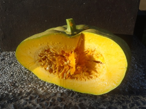 Homegrown pumpkin